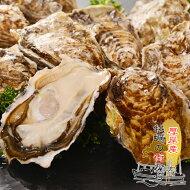 送料無料厚岸産生牡蠣20個