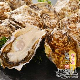 送料無料 北海道厚岸産 殻付き 生牡蠣 10個 2Lサイズ(130gから150g)
