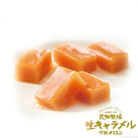 北海道限定 花畑牧場 生キャラメル 夕張メロン 常温タイプ 72gギフト 北海道土産 お菓子