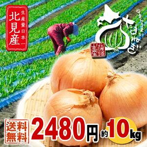 北海道 北見産 なまらうまい 玉ねぎ 10kg 送料無料まとめ買い 玉葱 たまねぎ タマネギ 玉ネギ お取り寄せ もったいない 野菜 食品訳あり形、大きさ不揃いですが品質に全く問題ありません。