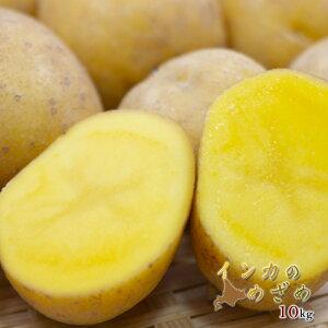 インカのめざめ 10kg 詰 送料無料今が旬 2020産 新じゃがいもじゃがいも 北海道産 幻のジャガイモ 秋の味覚 安い 野菜 ギフト 芋 いんか