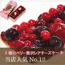 5種のベリー贅沢レアチーズケーキ【冷凍品の為同梱できません】北海道土産 暑中見舞い 敬老の日 ギフト