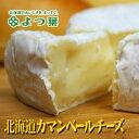 よつ葉 北海道 カマンベール チーズ 100gギフト 熨斗北海道土産 人気 暑中見舞い 敬老の日