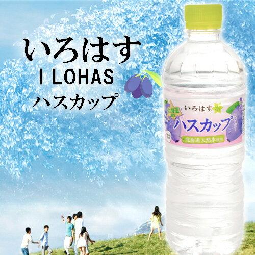 いろはす ハスカップ 555ml 24本 送料無料ギフト プレゼント 北海道限定 水 ドリンク北海道土産 暑中見舞い 敬老の日
