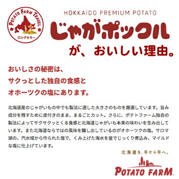 カルビーポテトファームじゃがポックルオホーツク焼き塩味【1箱】18g×10袋入北海道産じゃがいもオホーツク海自然塩使用手作りに近い生産法薯条三兄弟