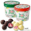 六花亭 ストロベリーチョコセット(ミルク・ホワイト) / 北海道お土産 お返し 友人 お取り寄せ 贈り物 かわいい いち…
