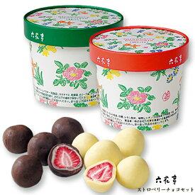 六花亭 ストロベリーチョコセット(ミルク・ホワイト) / 北海道お土産 お返し 友人 お取り寄せ 贈り物 かわいい いちご ドライフルーツ チョコレート 父の日【冷】