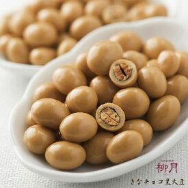 柳月 きなチョコ 黒大豆 70g全国観光推奨土産品 きな粉 チョコレート