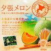Jumbo Yubari melon Pocky