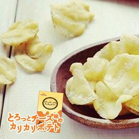 送料無料: とろっとチーズ味のカリカリポテト 3袋入×3箱 北海道お土産 カルビー ポテトファーム