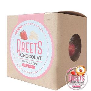 ふたみ青果 ドリーツショコラ ストロベリー DREETS CHOCOLAT 北海道産苺 いちご イチゴ 釧路 国産 ギフト かわいい ドライフルーツ ギフト 友人 義理チョコ ホワイトデー しみチョコ 子供 贈り物