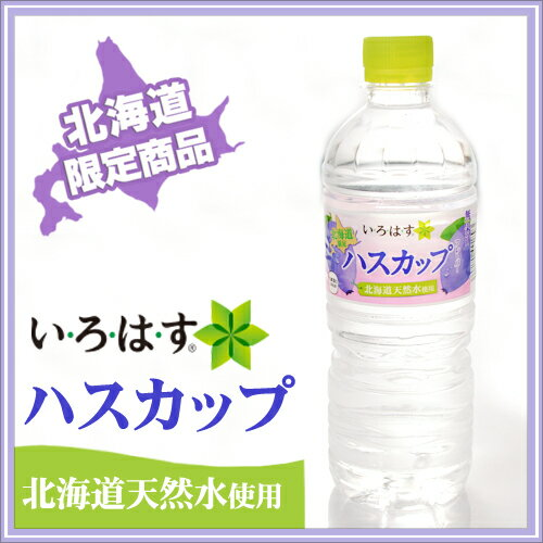 いろはす ハスカップ 555m 24本北海道限定 水 ドリンク 北海道土産 暑中見舞い 敬老の日