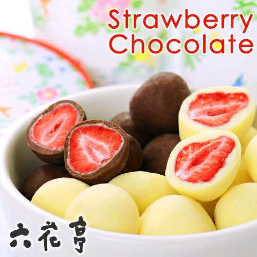 六花亭 ストロベリーチョコ セット(ミルク・ホワイト)北海道お土産 お返し 友人 お取り寄せ 贈り物 かわいい いちご ドライフルーツ チョコレート