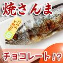 Y-sanma-c-f1