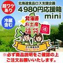 【送料店舗負担】 北海道食品ロス支援企画 超訳あり商品 詰め合わせ 4980円 ミニ箱コース(冷蔵込) 店長のもったいな…