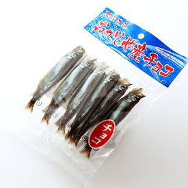 送料無料 ししゃもチョコレート 10個セット おかしや産ギフト ご当地 おもしろ北海道土産 ホワイトデー 義理 柳葉魚 シシャモ かわいい 子供 会社 友達 ウケ狙い 面白ギフト