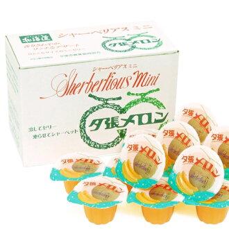 Yubari melon mini (entering 15)