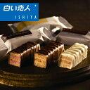 サクサクのミルフィーユをチョコでコーティング 美冬 3個入【石屋製菓】【北海道土産】【白い恋人】【ホワイトデー …