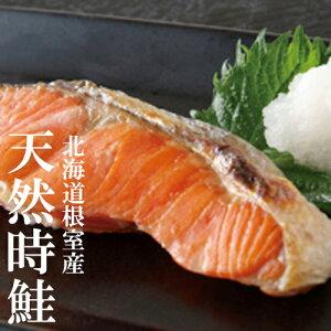 北海道根室産 天然 時鮭 (トキシラズ) 切り身 5切入時しらず 鮭 時知らずカネ 共 三友冷蔵株式会社 根室