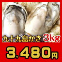 《九十九島産》殻付き生牡蠣3kg/開け方ガイド付生食可【送料無料】リピーター向け:ナイフ・軍手・レモンなし家族4人でも大満足!贈り…