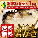 お試し!《九十九島産》(生)岩牡蠣約1Kg 6個前後(140〜170g)/かきナイフ・柑橘類・開け方ガイド付きで安心!【送料無料】御中元に…