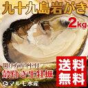 たっぷり2kg!《九十九島産》(生)岩牡蠣130g〜180g(12個前後)/付属品なし!【送料無料】御中元にも最適!