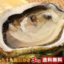 たっぷり3kg!《九十九島産》(生)岩牡蠣130g〜180g(18個前後)/牡蠣ナイフ、開け方ガイド付き!【送料無料】御中…