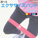 エクササイズ バンド ゴム チューブ ループバンド フィットネス トレーニング 体幹 ダイエット ヨガ 尻 強度別 単品 5…