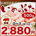 【淡路島産 ゴールデン・ボア・ポーク(淡路産 いのぶた) ロース 500g】精肉店直送で安心・安全 にも!(猪豚 イノブタ …