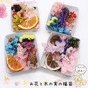 【10%OFF】【メール便送料無料】アロマワックスバー用お花と木...