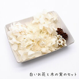 白いお花と木の実のセット 1ケース /ハーバリウムやアロマワックスバー ボタニカルサシェにも 花材 プリザーブドフラワー 白色 ホワイト あじさい SAデージー クリスパム モリソニア ヘリクリサム
