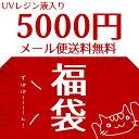 【メール便送料無料】レジン パーツ 2018年新春福袋 5000円(UVレジン液入り)