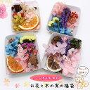 【メール便送料無料】アロマワックスバー用お花と木の実の福袋 ...