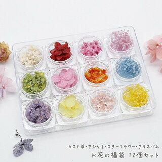 カスミ草・アジサイ・スターフラワー・クリスパムお花の福袋12個セット