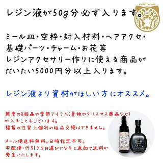 【メール便送料無料】レジンパーツ2019年新春福袋3000円