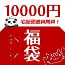 【送料無料】2019年新春福袋 10000円 /レジン福袋 レジンクラフ...