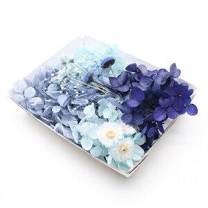 ロイヤルネイビー花材セット 1ケース /ハーバリウムやアロマワックスバー ボタニカルサシェにも 花材 プリザーブドフラワー あじさい ブルー 紺色 青色 イモーテル かすみ草 カスミソウ か