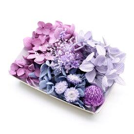 ハーバリウム花材 スミレカラー花材セット 1ケース プリザーブドフラワー ドライフラワー