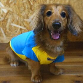 【ワイプアウト/wipeout】無料で名前が入れられる!日本製犬用ラッシュガード(ミニチュアダックス用)WDR4100犬用ひんやりアイテムいぬ紫外線対策水着UVカットだっくすDサイズ2014SS