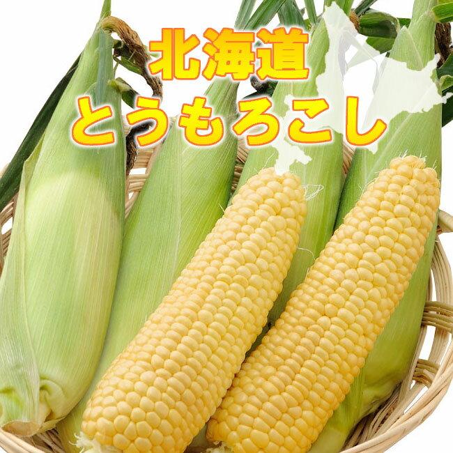 【お取り寄せグルメ】北海道とうもろこし 0000-031083 トウモロコシ 北海道産 北海道直送品 送料無料 のし対応可 ギフト 贈物