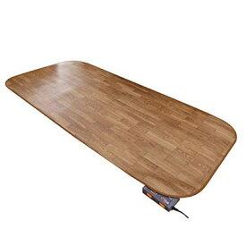 ラグ カーペット じゅうたん ラグマット 絨毯 安い ホットカーペット 防水 木目調 カバー セット 1畳 (98×200) マット 電気マット 厚手 長方形 洗える