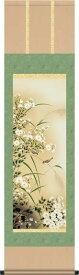 送料無料 緒方葉水 菊花に雀 掛け軸 掛軸