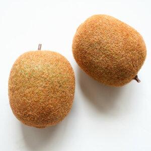 キウイフルーツ装飾品アジアン雑貨販売BCDSHOP