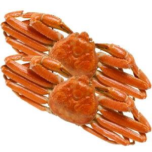 海鮮 材料 食材ボイルずわいがに姿 ZHB602【送料無料】