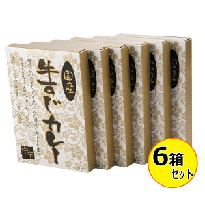 レトルト ビーフカレー 防災国産 とろける牛すじカレー 180g×6箱セット KGS-30【送料無料】