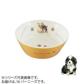 犬 食器 えさ皿わんコレ カラーフードボウル(小) バーニーズ new-fb4-S6【送料無料】