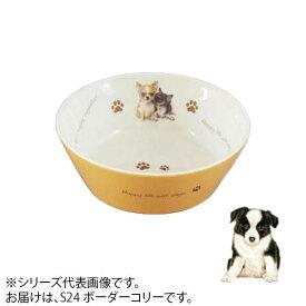 ドッグフード 食器 犬わんコレ カラーフードボウル(小) ボーダーコリー new-fb4-S24【送料無料】