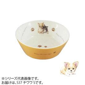 ドッグフード 餌皿 食器わんコレ カラーフードボウル(小) チワワ S new-fb4-S37【送料無料】