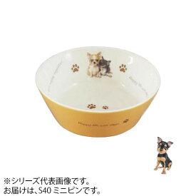 食器 餌皿 えさ皿わんコレ カラーフードボウル(小) ミニピン new-fb4-S40【送料無料】