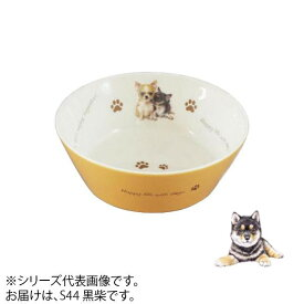 えさ皿 餌皿 食器わんコレ カラーフードボウル(小) 黒柴 new-fb4-S44【送料無料】